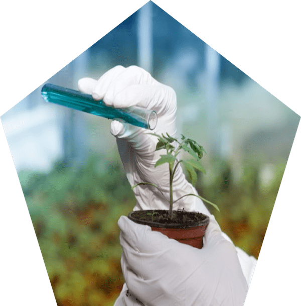 sulfolane-company.com other applications agrochemicals